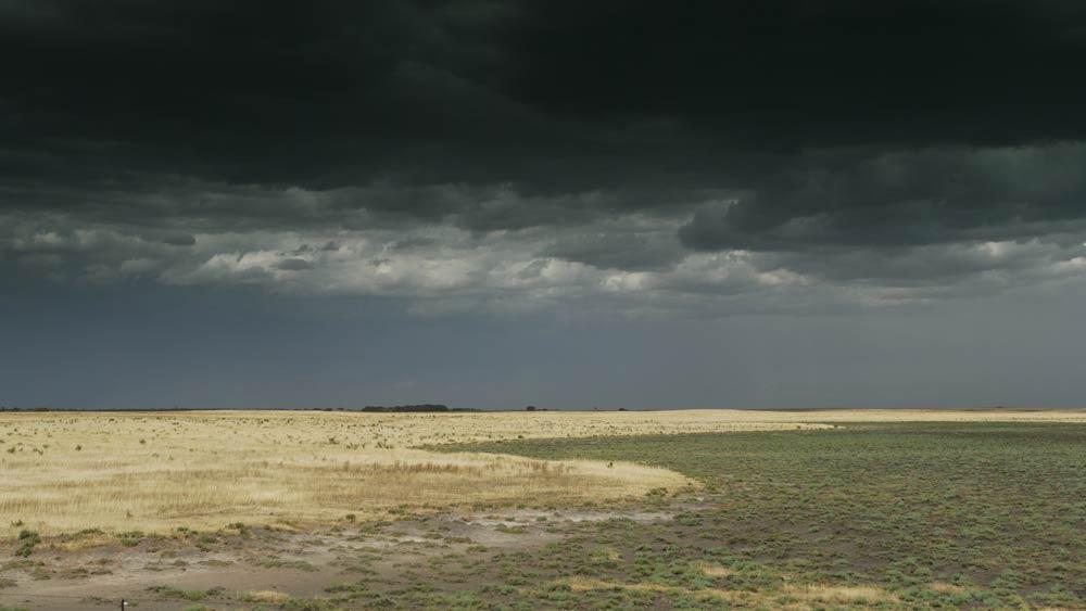 storm pastures