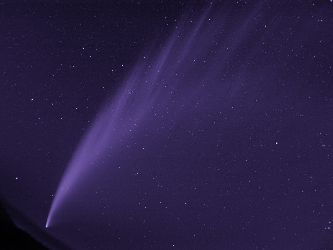 Comet McNaught